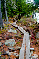 Hiking path around Jorden Pond, Acadia NP